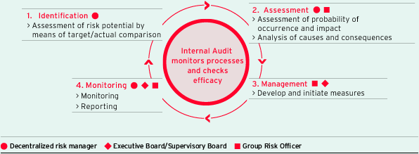 Risk management process (graphic)